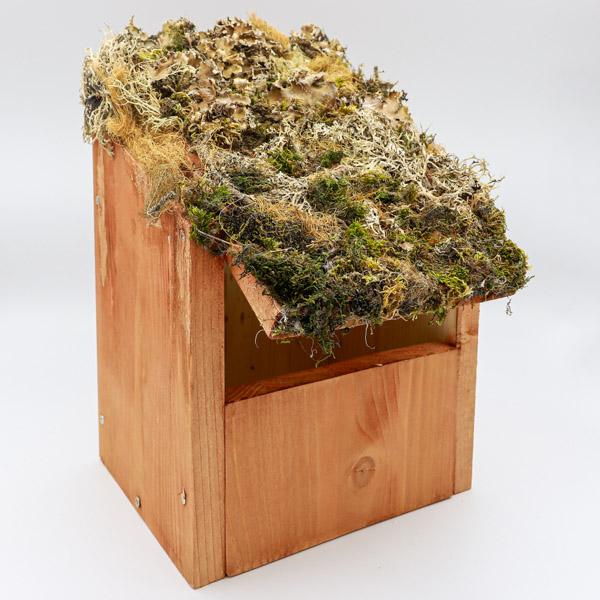 Caja nido camuflaje